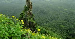 Sagargad Fort Trek Maharashtra Monsoon Trekking Nature Mountains Adventure Activities