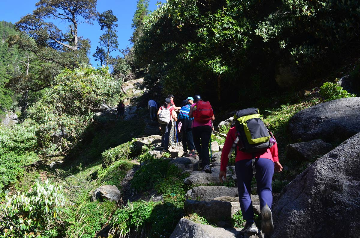 Kareri Lake Trek Himachal Pradesh Dharamshala Adventure Trail