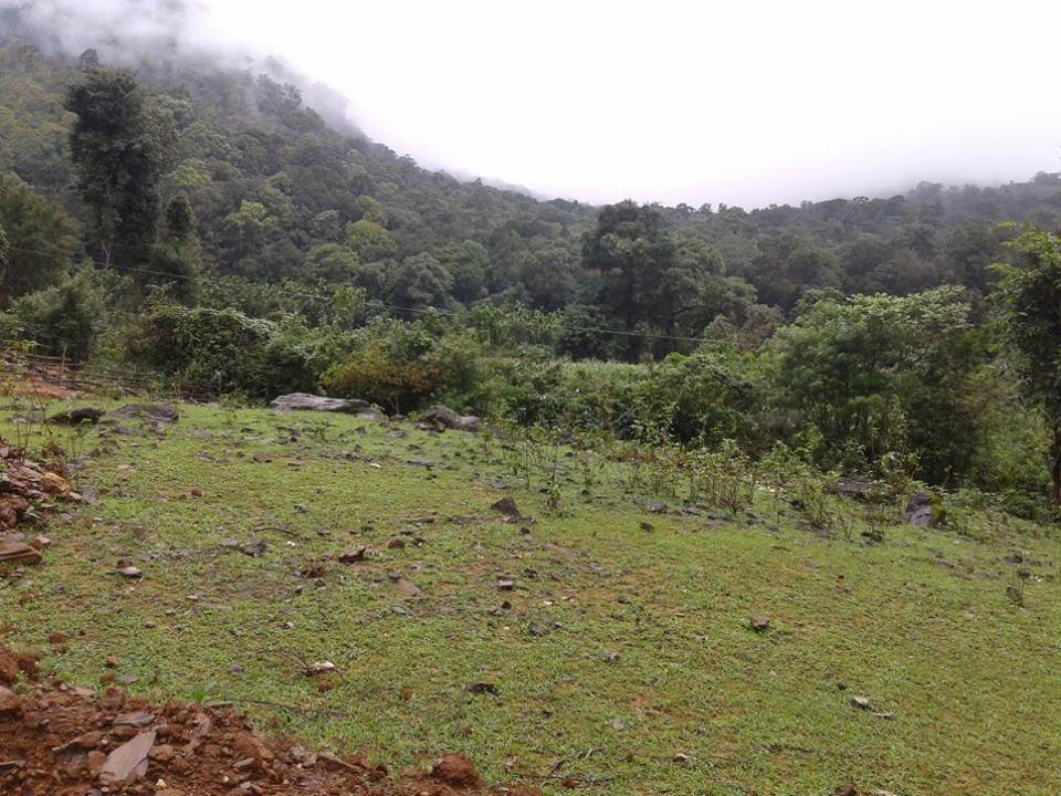 Kodachadri Trek Kayaking Bangalore Monsoon Trek Sahyadri Forests The Great Next