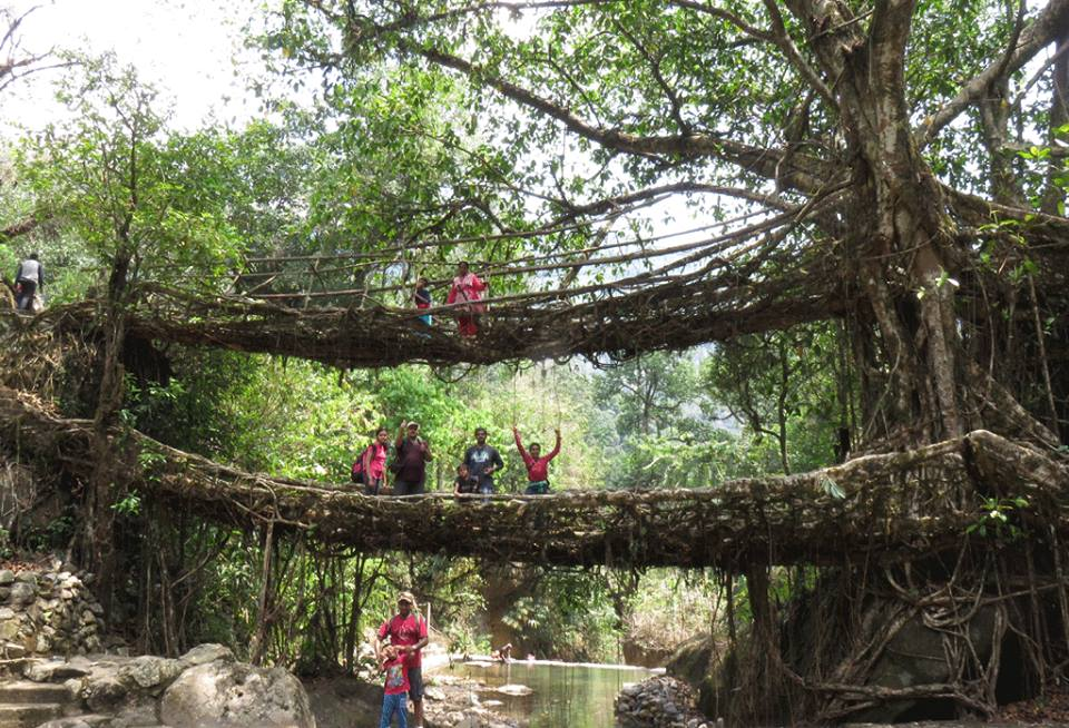 Meghalaya Multi-adventure Kayaking Dawki River Mawmluh Caving Living Roots Bridge India The Great Next