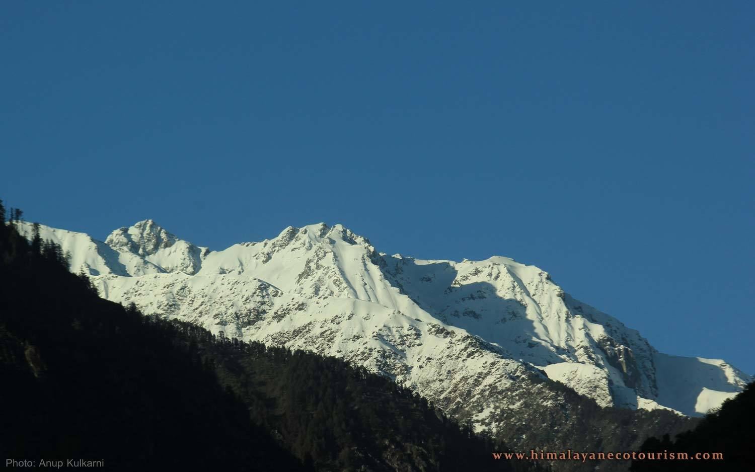 Shilt Hut Trek Great Himalayan National Park Kullu Manali  Trekking Adventure The Great Next
