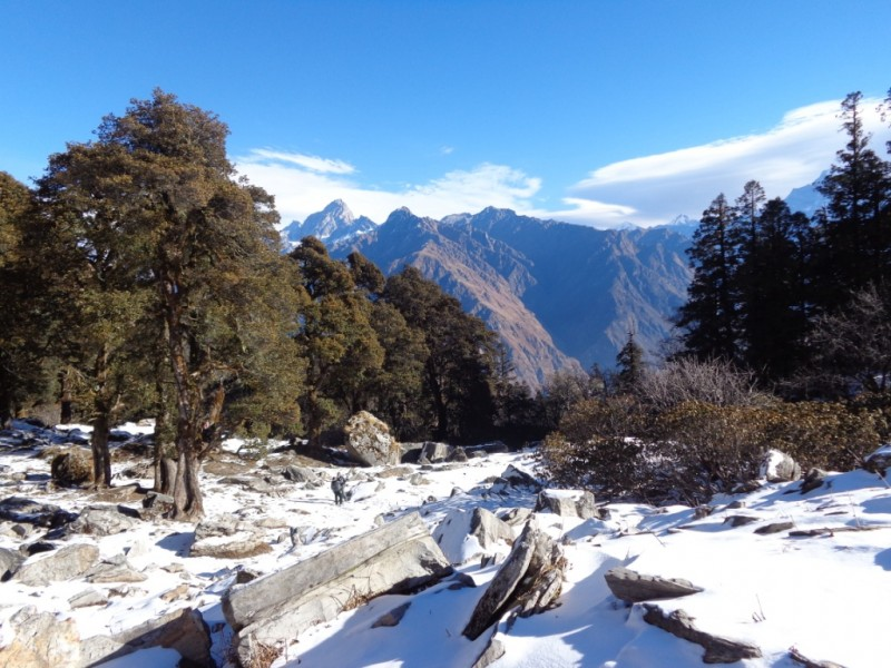 Kuari Pass Snow Trek Uttarakhand Auli Nanda Devi Adventure Trekking India The Great Next