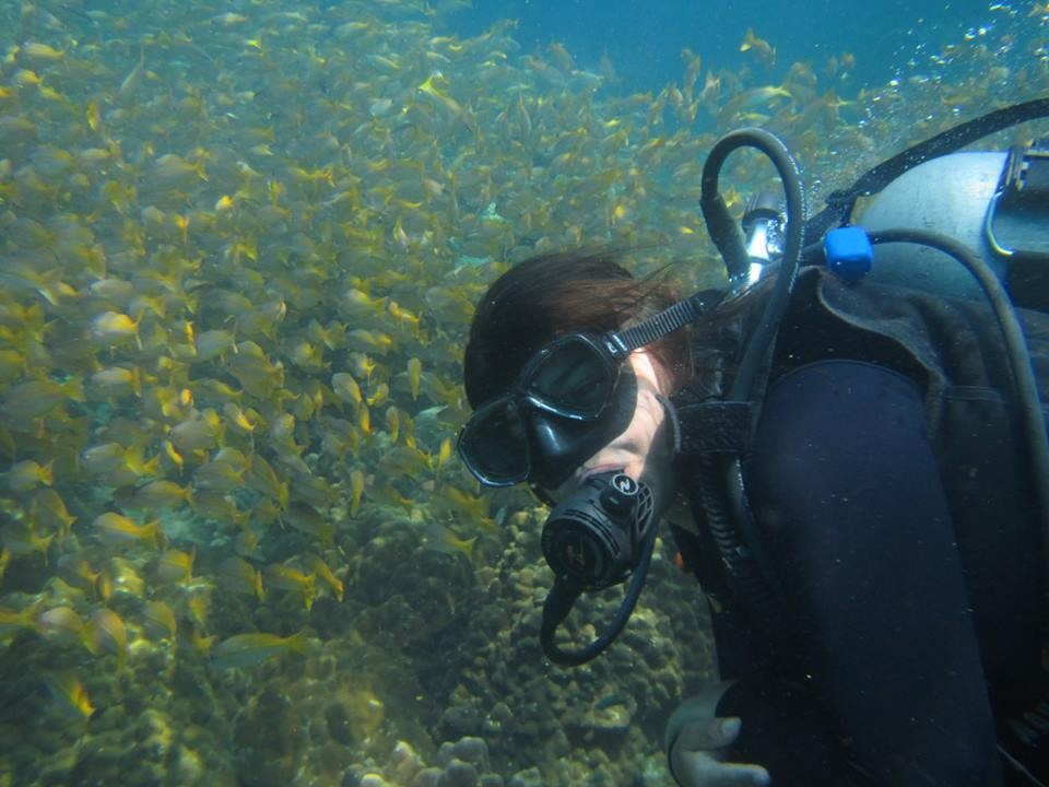 Scuba Diving PADI Open Water Koh Samui Thailand Adventure Travel The Great Next
