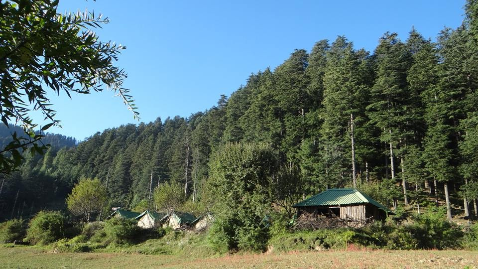 Chakrata Uttarakhand Kanasar Forest Trip Green Canvas Resort Adventure Travel The Great Next