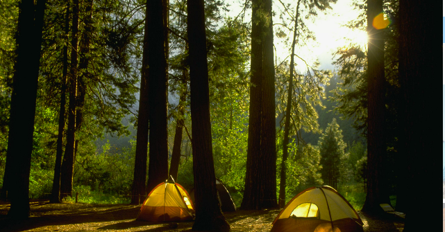 Mussoorie adventure camp Dehradun Uttarakhand Delhi Camping Travelling Nature Activities