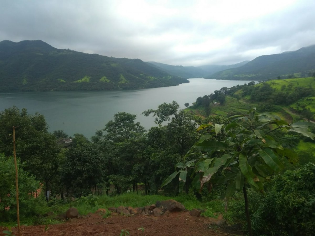New Year 2020 Camping Lakeside Lavasa Pune The Great Next