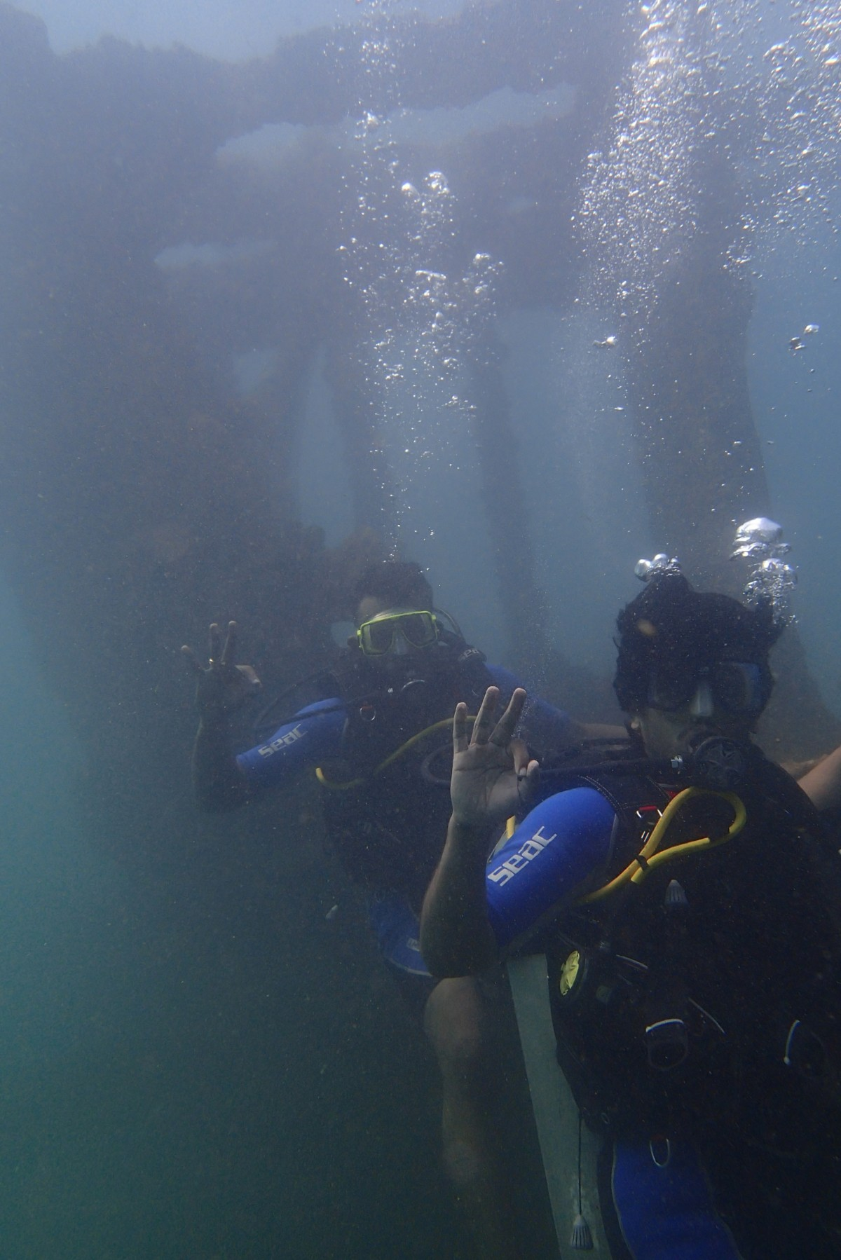Scuba Diving Goa Grande Island The Great Next Adventure Travel
