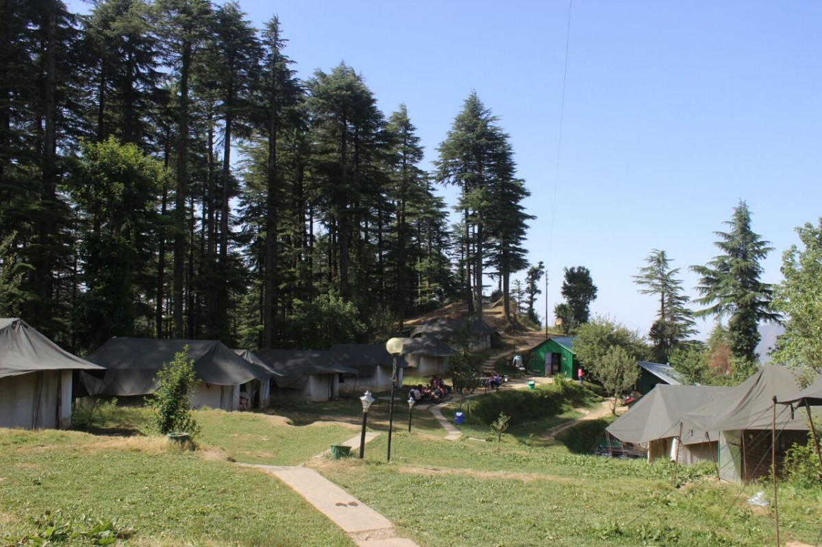 Camping Kanatal Uttarakhand Adventure Travel The Great Next