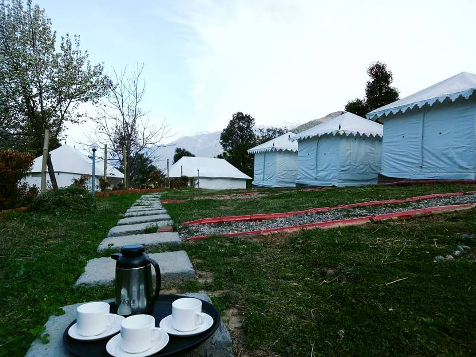 Camping Himachal Pradesh Bir Biling Adventure Travel The Great Next