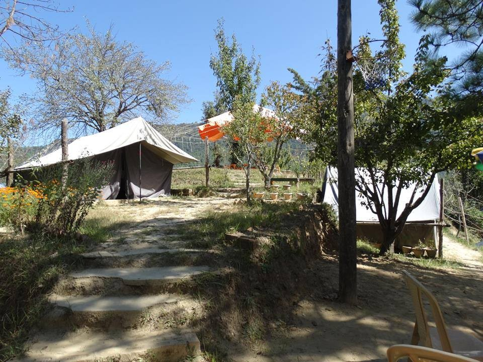 Camping Uttarakhand Mukteshwar Adventure Travel The Great Next