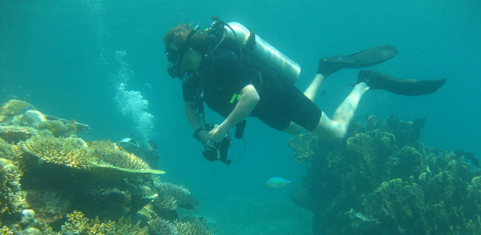 Scuba Diving Scuba Diver Course Andamans Havelock Adventure The Great Next