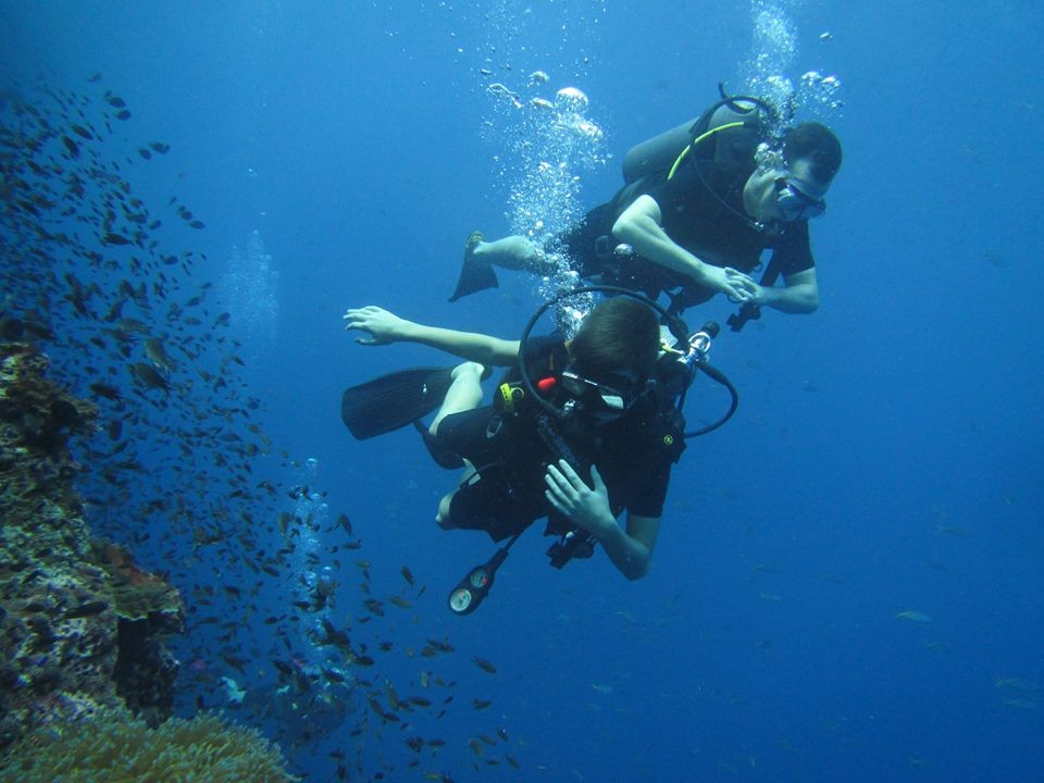 Scuba Diving Koh Samui Thailand Adventure Travel The Great Next