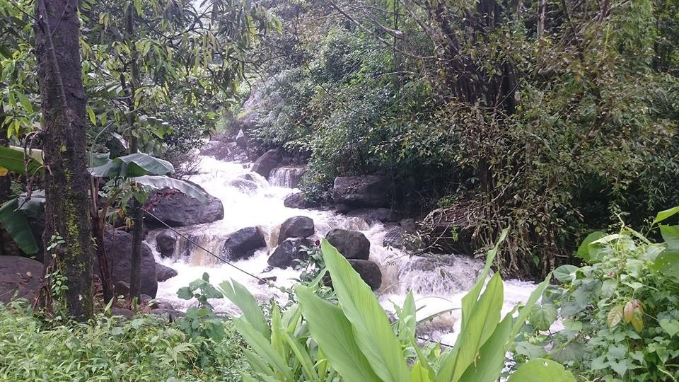 Paithalmala Western Ghats Camping Greenery Group The Great Next