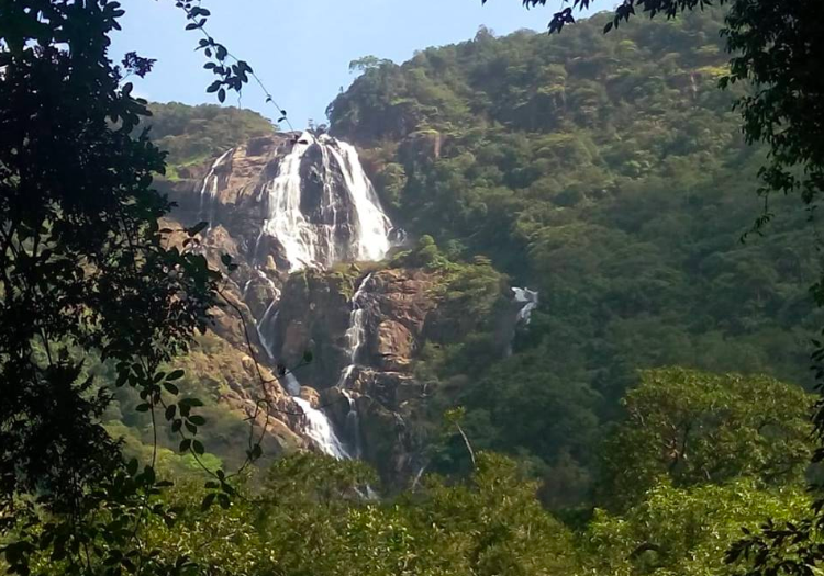 Dudhsagar Waterfall Tambdi Surla Waterfall Kulem Goa Trekking Adventure Destinations Nature Travel