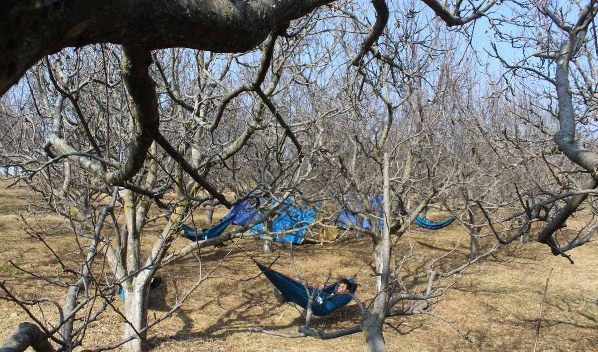 Camping Thachi Valley Himachal Pradesh Adventure Travel The Great Next