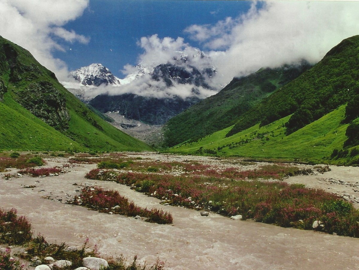 Trekking Valley Of Flowers Uttarakhand Adventure Travel The Great Next