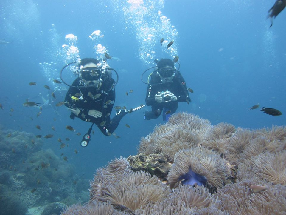 Scuba Diving PADI Koh Samui Thailand Adventure Travel The Great Next