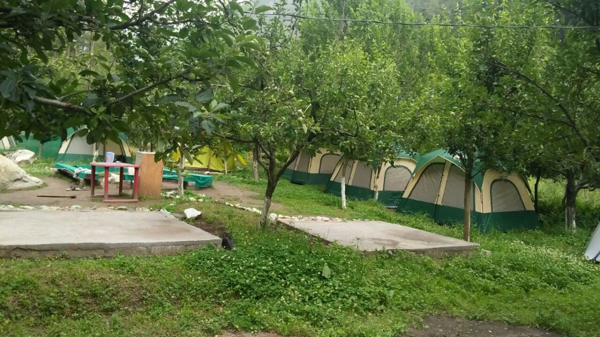 Camping Kasol Himachal Pradesh Adventure Travel The Great Next