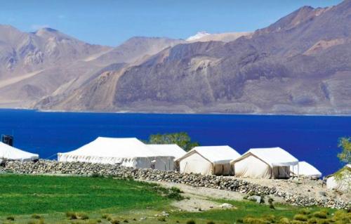 Camping Jammu Kashmir Pangong Lake Luxury Nature Travel Adventure Activity