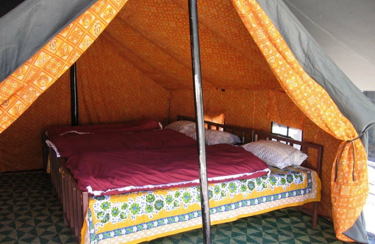 Camping Mussoorie Uttarakhand Adventure Travel The Great Next