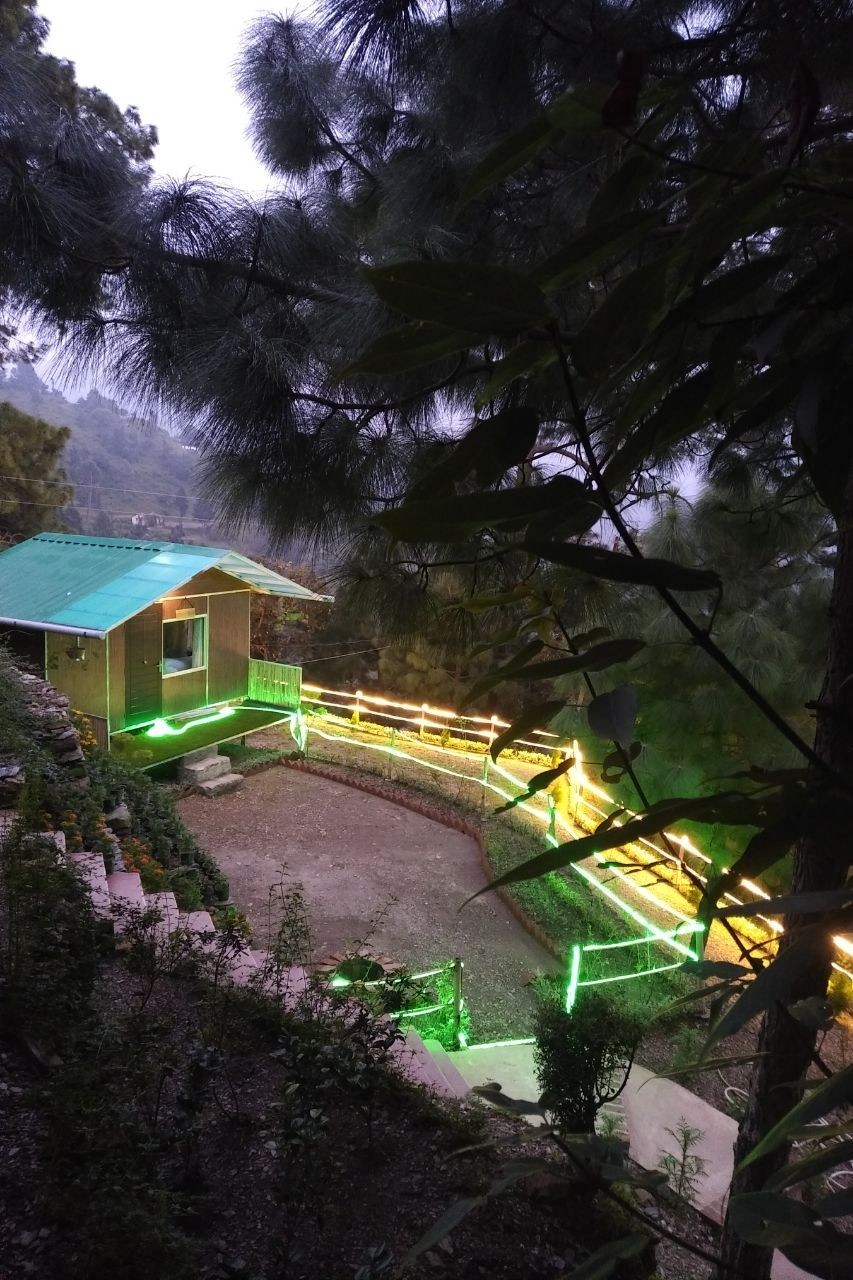 Camping Nainital Pangot Uttarakhand Adventure Travel The Great Next