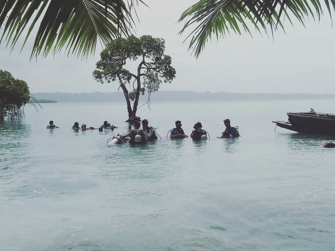 Try Dive Discover Scuba Diving Andaman Havelock Island Underwater Sea Creatures Adventure Travel The Great Next