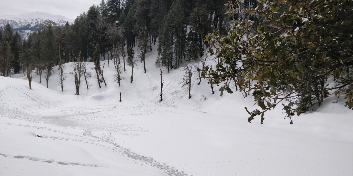 Trekking Kedarkantha Mountain Himalayas Uttarakhand The Great Next