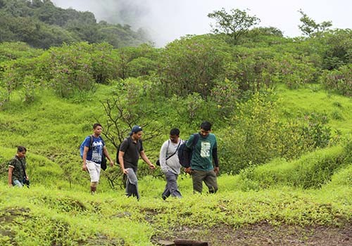 Trekking Andharban Waterfalls Maharashtra Adventure Travel The Great Next