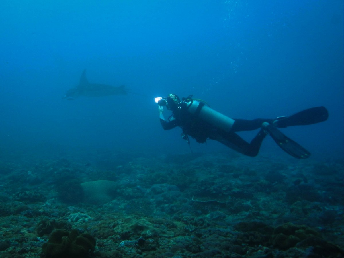 Scuba Diving Bali Indonesia Amed Adventure Travel The Great Next