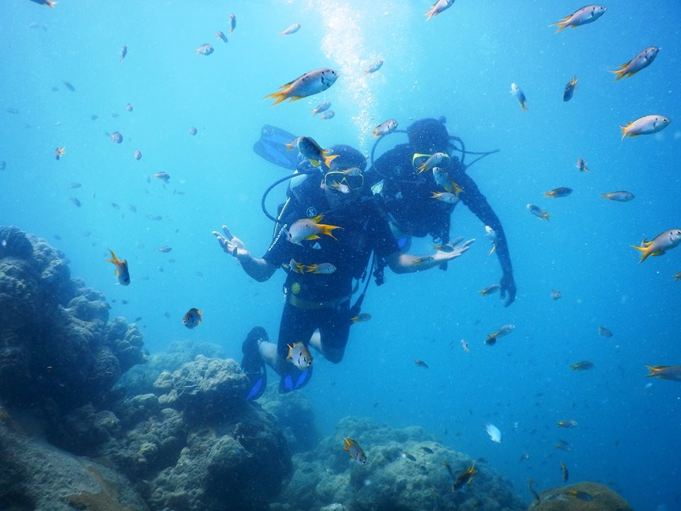 Scuba Diving Havelock India Try Dive SSI Adventure Travel The Great Next