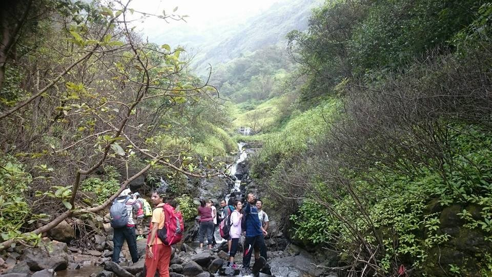 Andharbhan Night Trek Maharashtra Sahyadris Trekking Adventure Activity Nature