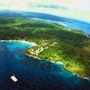 Bali Diving Beach Cruise Parasailing Snorkelling Banana Boat Ride The Great Next