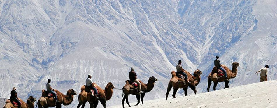 Road Trip Ladakh Jammu Kashmir Adventure Travel The Great Next