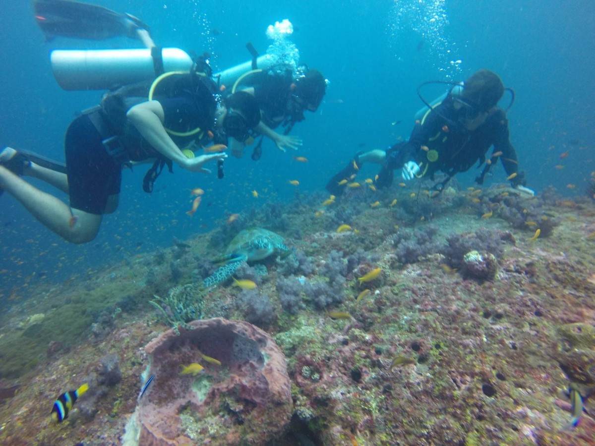Scuba Diving Open Water PADI Andaman Neil The Great Next Adventure Travel