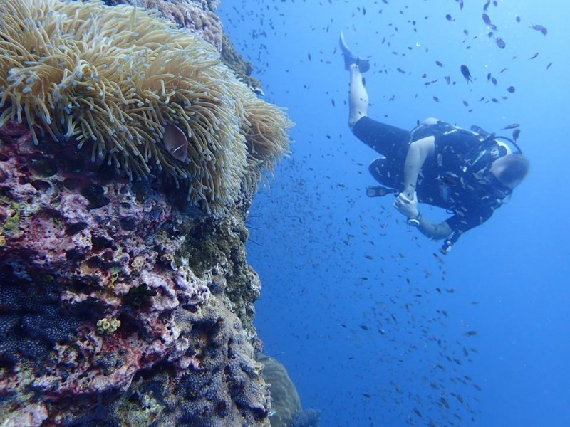 Scuba Diving PADI Advanced Open Water Koh Samui Thailand Adventure Travel The Great Next