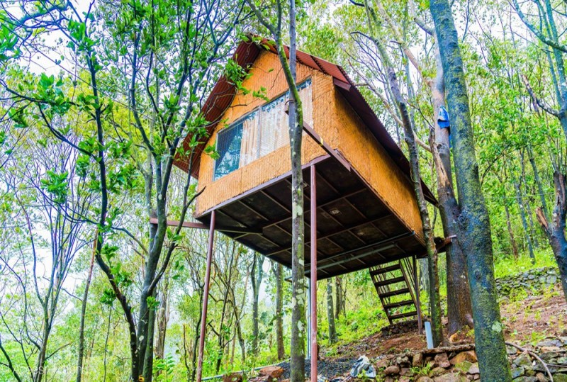 Paithalmala Tree House Camping Greenery The Great Next