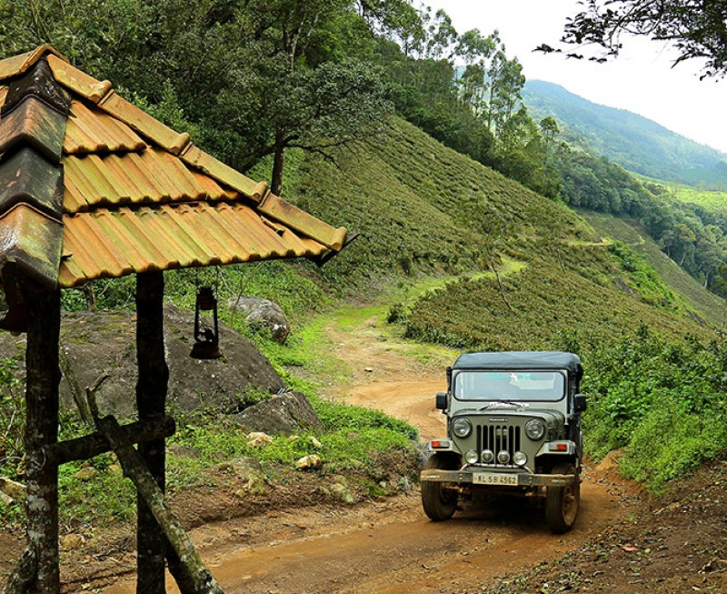 Munnar Camping Tent Stay Safari Adventure Travel The Great Next